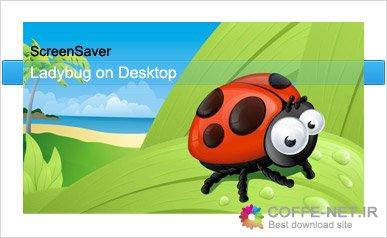 دانلود Ladybug on desktop